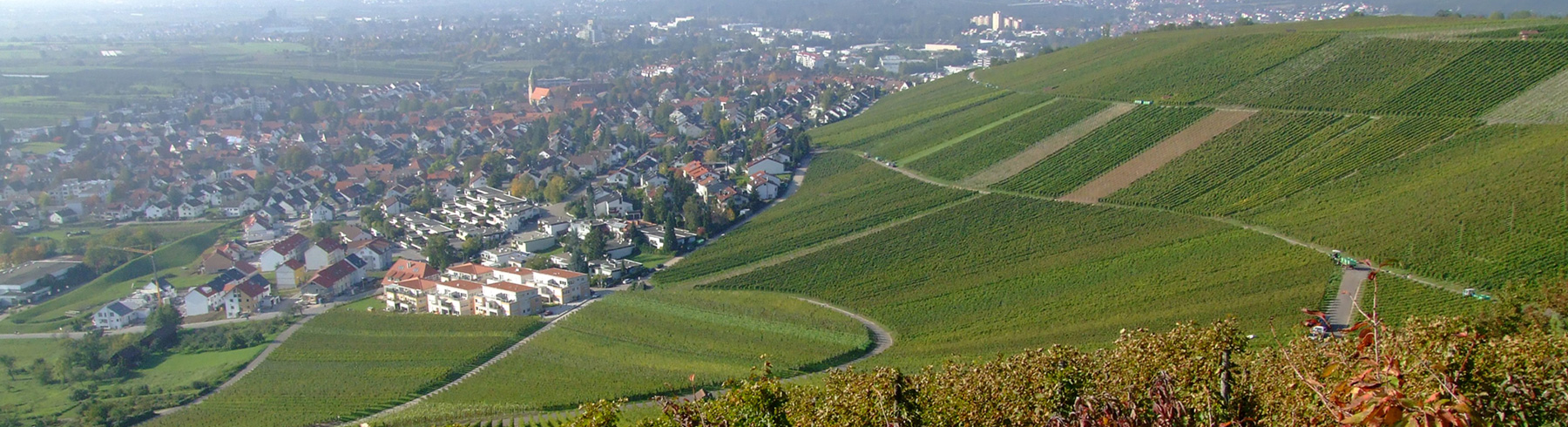 Beutelsbach_Panorma